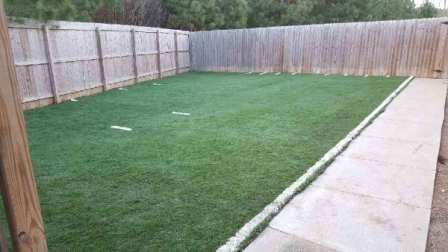 Doggie Day Care Turf